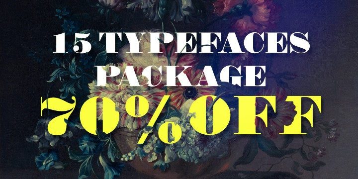 Purchase the 15 FONTS PACKAGE with a 70% OFF Discount!!!